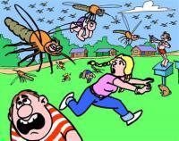 Un'estate senza l'incubo delle zanzare  Copertina
