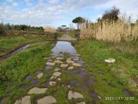 L'Appia Antica: una strada che non meritiamo Copertina