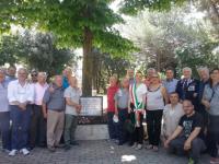 Cessa l'attività di gestione del parco Lupini da parte del Comitato di Quartiere Copertina