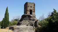 Via Appia Antica, Frattocchie-Santa Maria delle Mole: al via i lavori di pulizia e valorizzazione Copertina